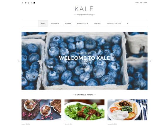 [Resim: kale-wordpress-theme-jpg.4063]